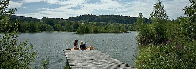 Erlauzwieseler See im Bayerischen Wald